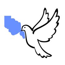 فلاشات السلام